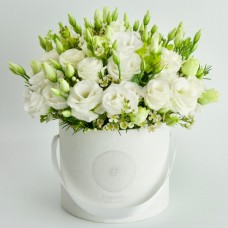 Lisianthus white perenials
